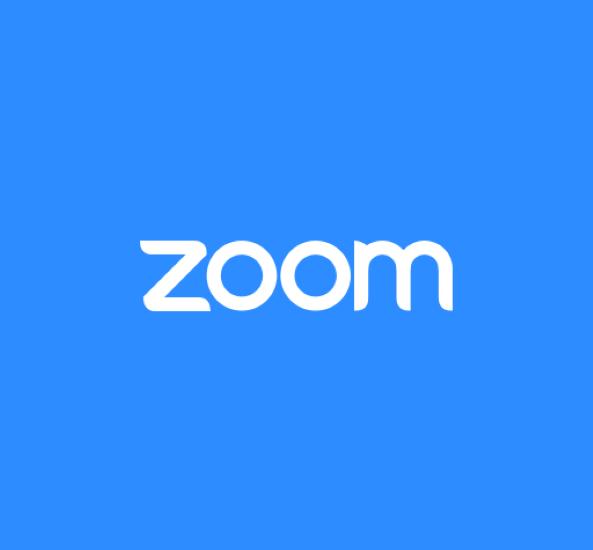 Zoom Zero Day